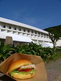 060503hamburger