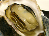 070903oyster