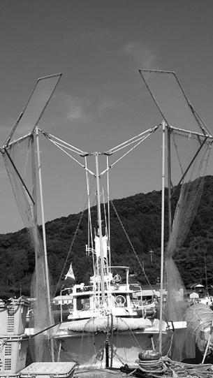 081022fishing_net