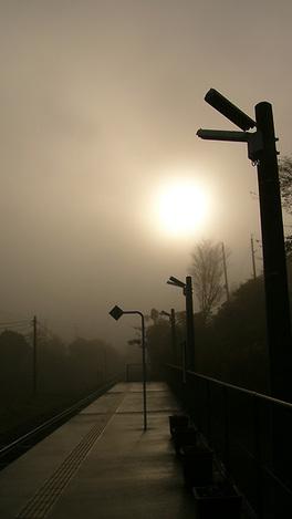 091123morning_mist