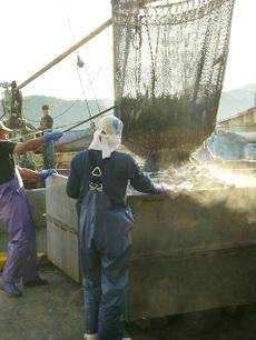 100922fishing_port01