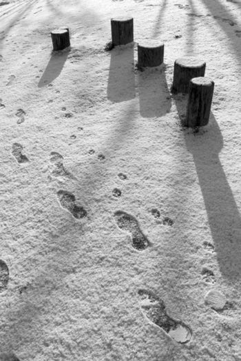 101231first_snow01
