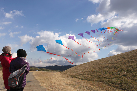 110130flying_kites01