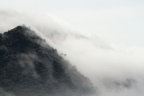 110708dense_fog02
