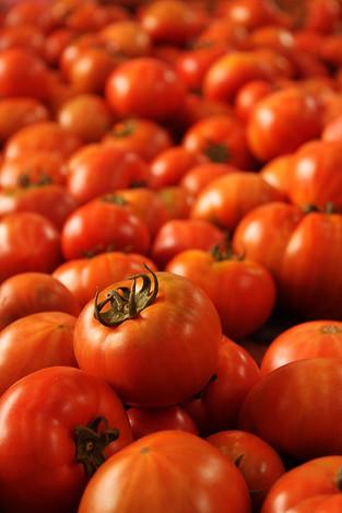 120513sweet_tomatos1