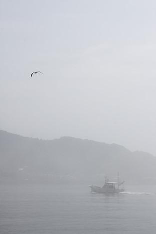 120715dense_fog01