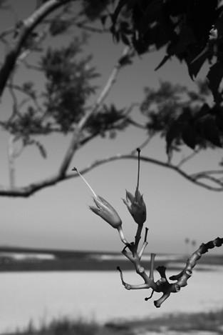 120925sandy_beach2b