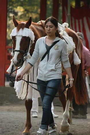 121008on_horseback1