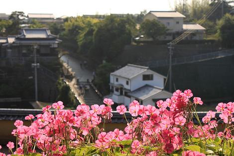 121028samurai_residence01