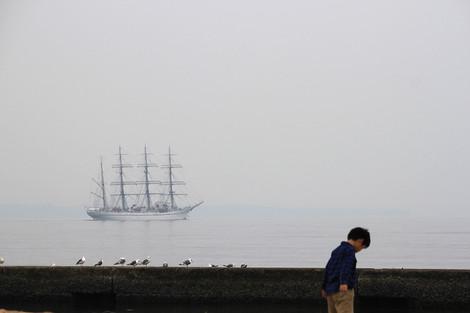 131102sailing_ship01