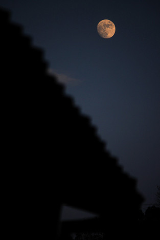 131215by_lamplight05