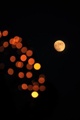 131215by_lamplight11