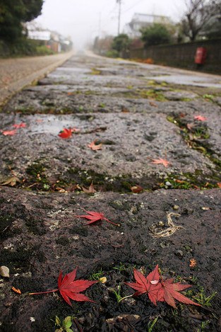 141109stone_pavement02