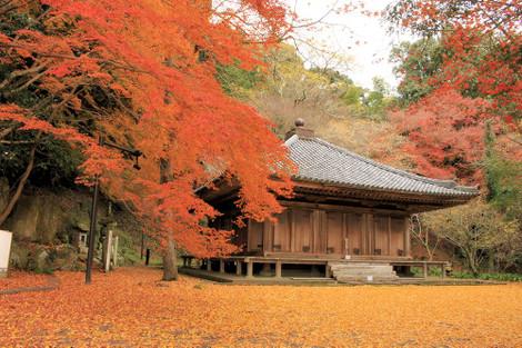 151213tendai_temple02