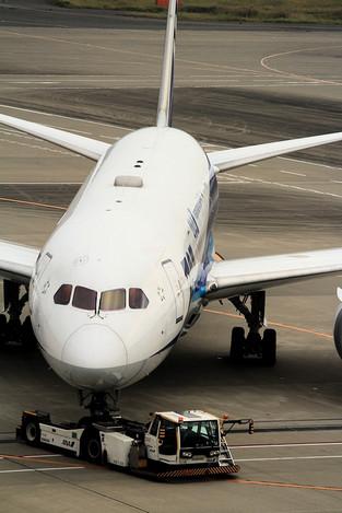 181106haneda_airport01